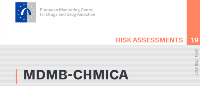 Risk Essment Report | Risk Assessment Report Published On Commonly Used Synthetic